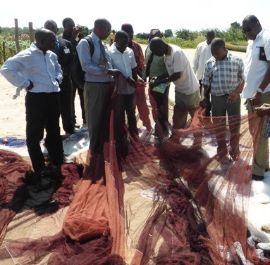 Inspecting mesh sizes of nets at one of the breeding areas