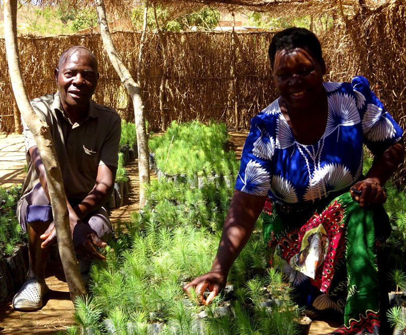 Jane-and-Oliver-tree-planting-farmers-Malawi
