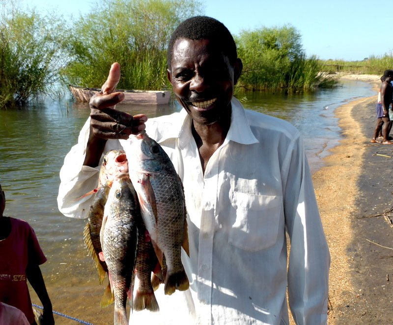 Fish Conservation in Malawi, Ripple Africa