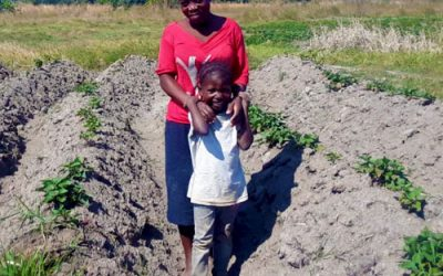 Subsistence farming in Malawi