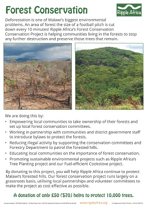 Forest conservation fundraising sheet