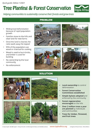 Forest Conservation and Tree Planting Quick Guide