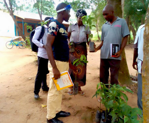 Tree nursery team deliver fruit trees to teachers in Malawi