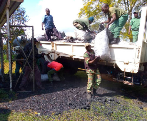 Forestry guards unload bags of charcoal confiscated in Malawi
