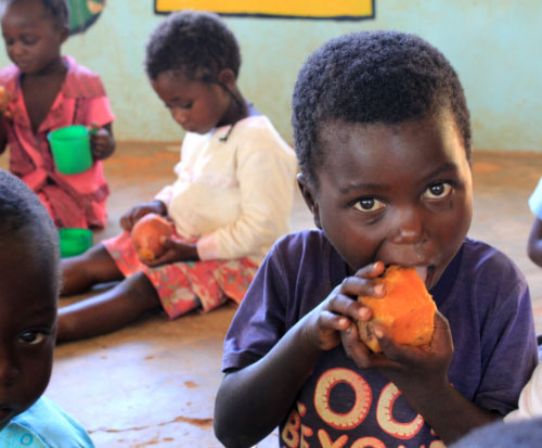 A child eats his school meal of sweet potato in her hands in Malawi