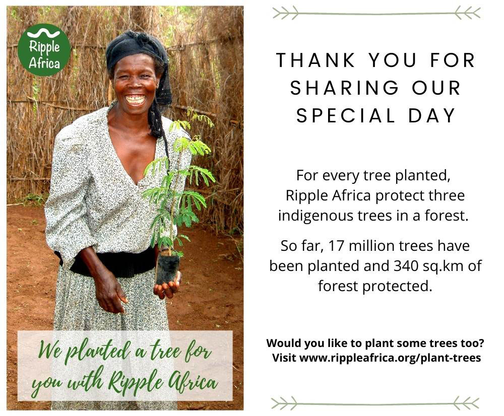 Wdding favours plant a tree in Malawi