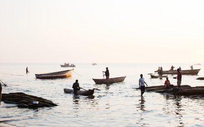 World Fisheries Day