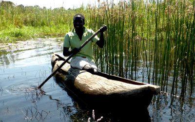 Community Sustainable Fisheries Management