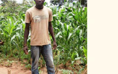 RIPPLE Africa Volunteer Blog – No. 86